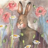 Hare & Poppies AC578, prianie