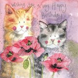 Cats & Poppies AC602, prianie