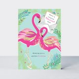 Birthday/Flamingos, prianie
