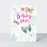 Birthday Wishes/Butterflies, prianie